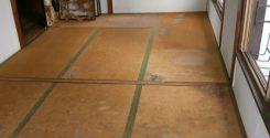 猫の糞尿の片付け及び消臭・消毒|埼玉県草加市の築50年の借家(間取:3DK)の生前整理