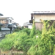 空き家の草刈り前の状態