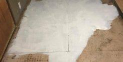 孤独死(死後2週間)に伴う現場の特殊清掃|栃木県宇都宮市の戸建て住宅にて特殊清掃
