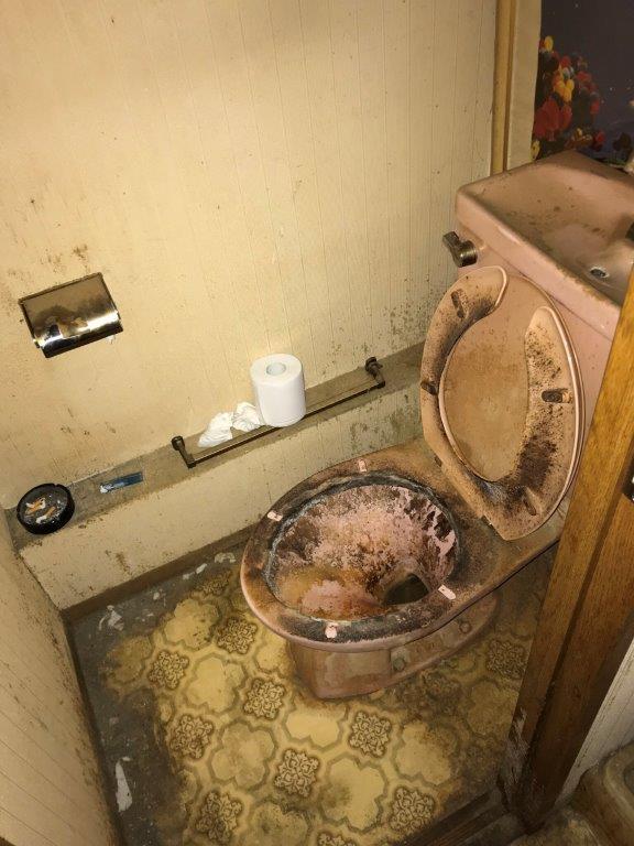 トイレのクリーニング前