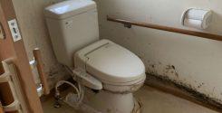 栃木県宇都宮市にてトイレの特殊清掃作業