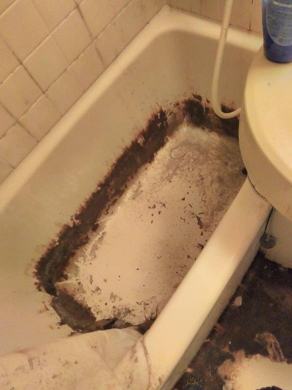 浴室のクリーニング前