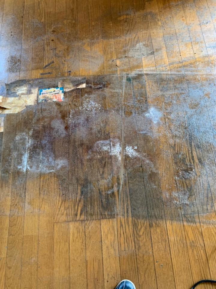 体液が染み込んだ床