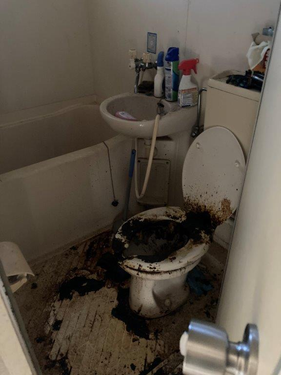 浴室・トイレの片付け・清掃前